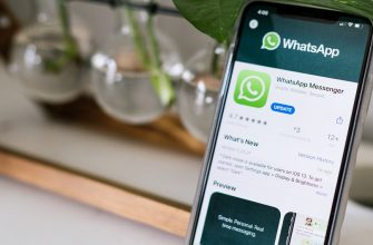 Как включить темную тему в WhatsApp на смартфоне и компьютере